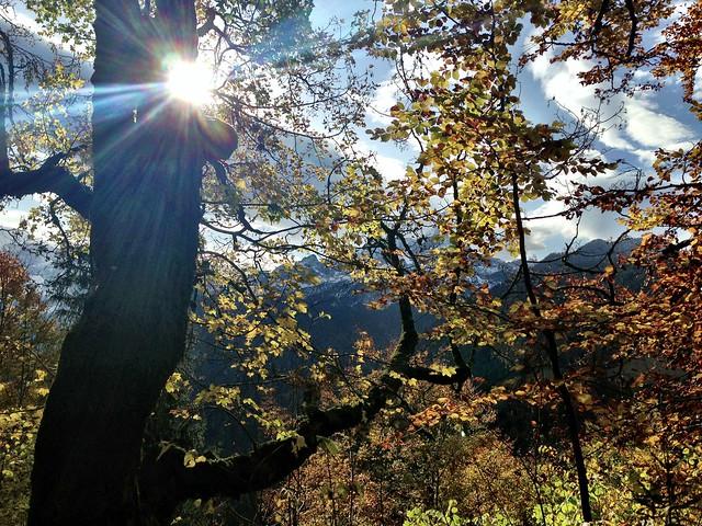 Herbst in Garmisch