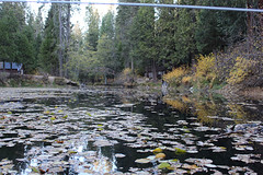 Quilt Retreat Fall 2013-201