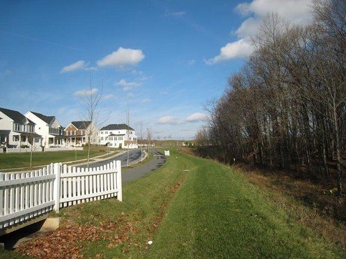 Image of a grass swale next to a row of townhomes.