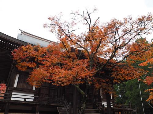 神護寺 毘沙門堂