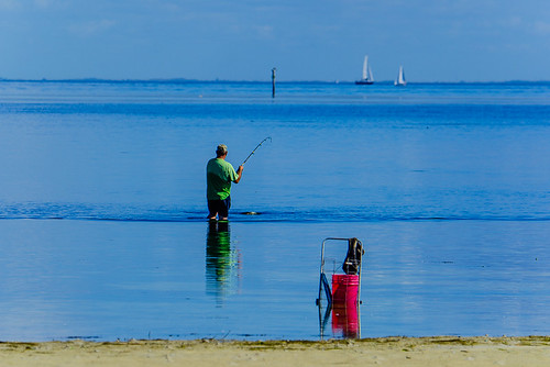 Fisherman stops to cast the line at low tide on Tampa Bay