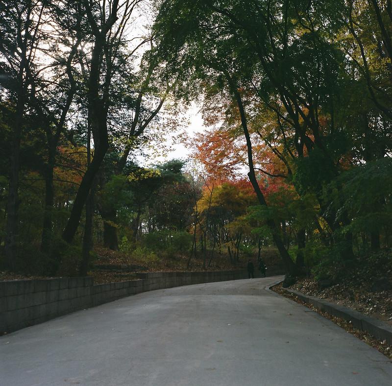 【Bronica S2】-首爾昌德宮