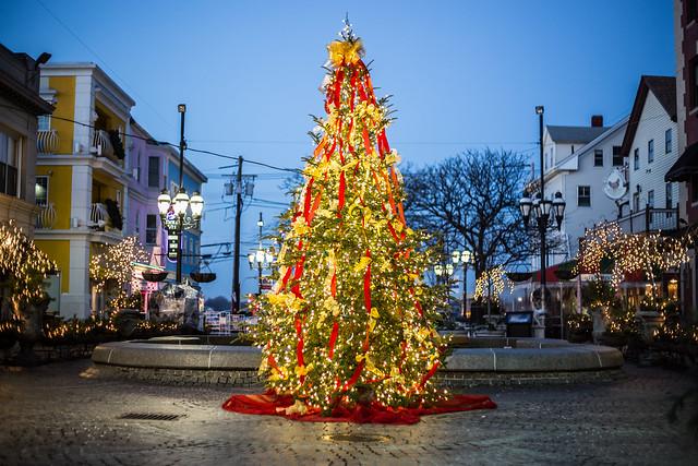 Christmas Greater City Providence - Christmas Trees Ri