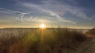 Sonnenstrahlen / shafts of sunlight