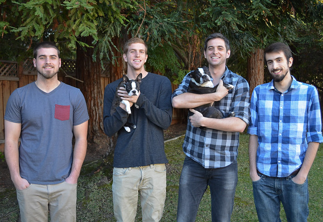 A group of people young men and two dogs on a lawn.