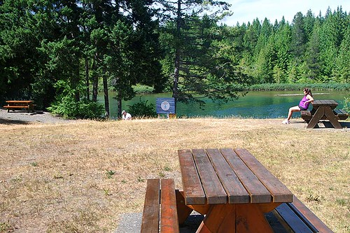 Puntledge River near Comox Lake near Courtenay, Vancouver Island, British Columbia