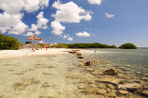 beach day playa aruba mangrove netherlandsantilles manglar mangroveswamp flickraward antillasholandesas nikonflickraward mangelhalto mangelhaltobeach flickrtravelaward pwpartlycloudy