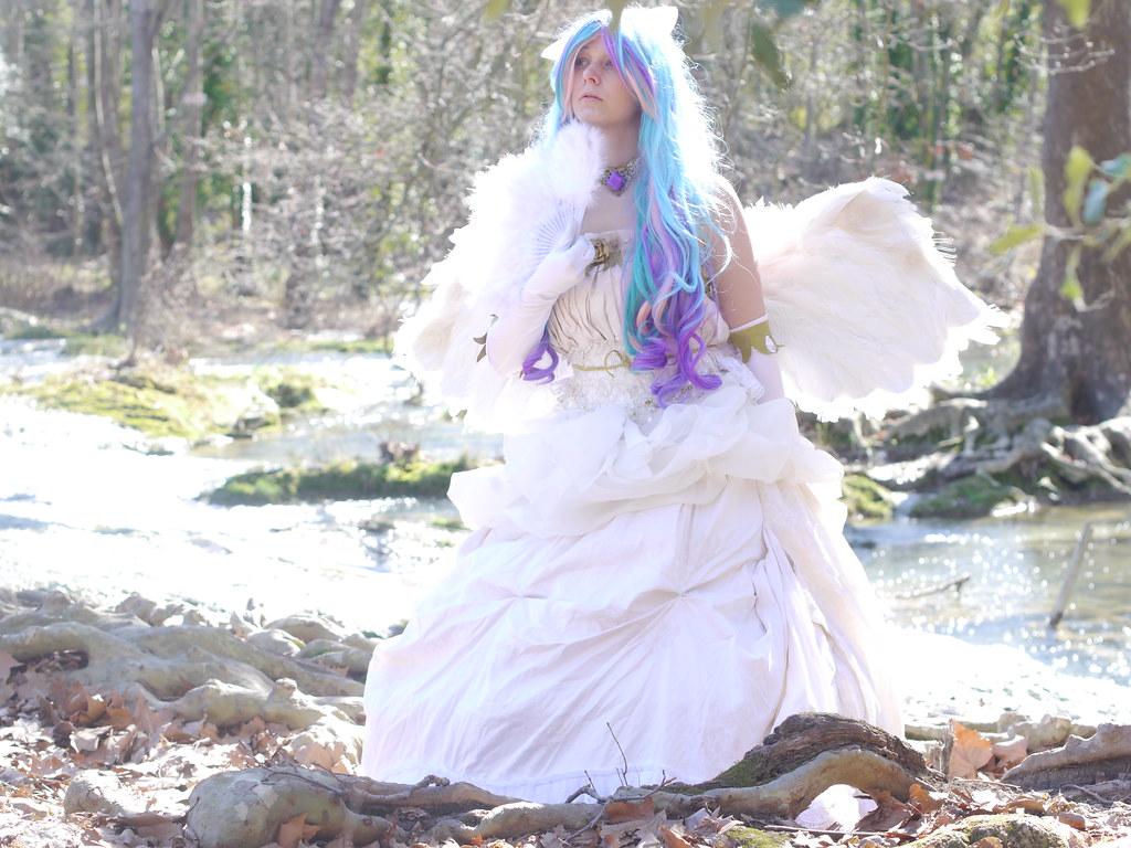 related image - Shooting Celestia - My Little Pony - 2014-02-23- P1780600