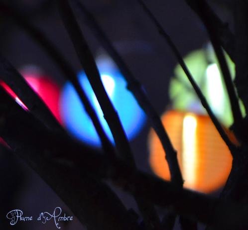 Lumière la nuit
