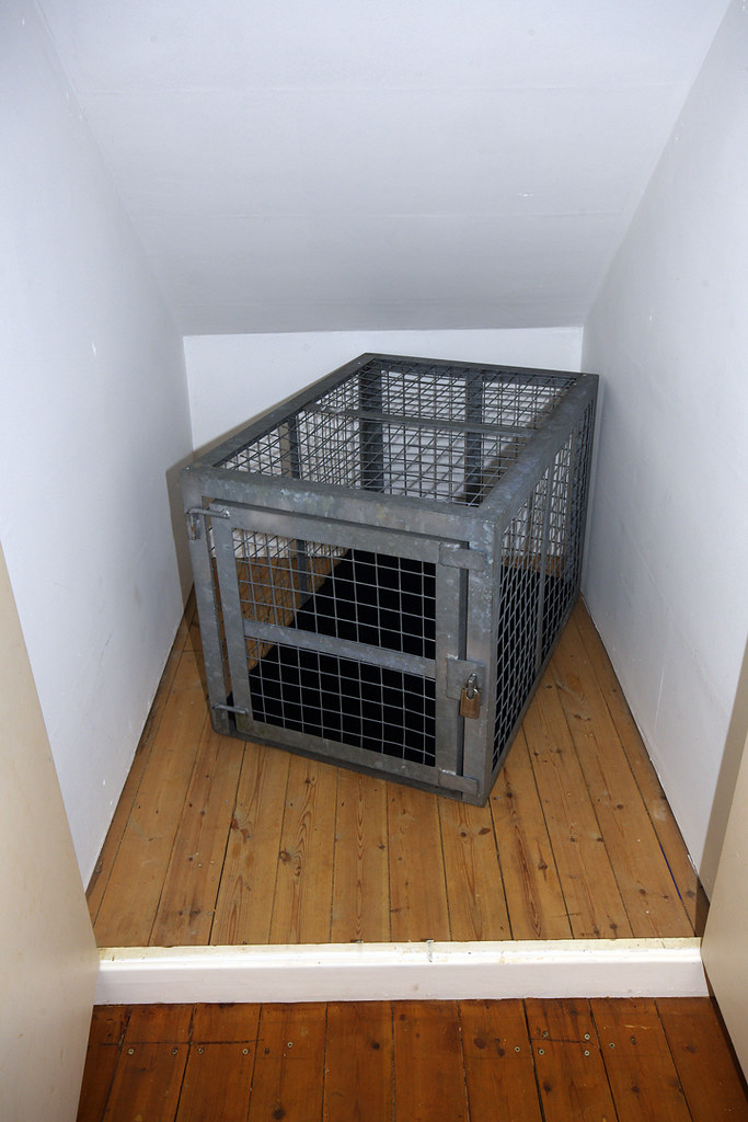 Femdom castration free pics