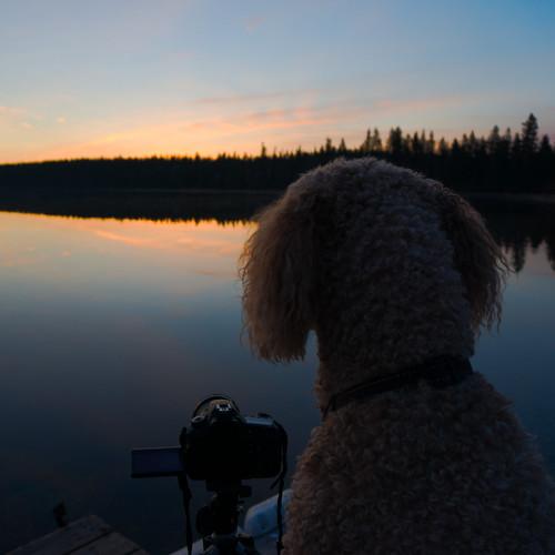 camping sunrise chloe manitoba ridingmountain moonlake