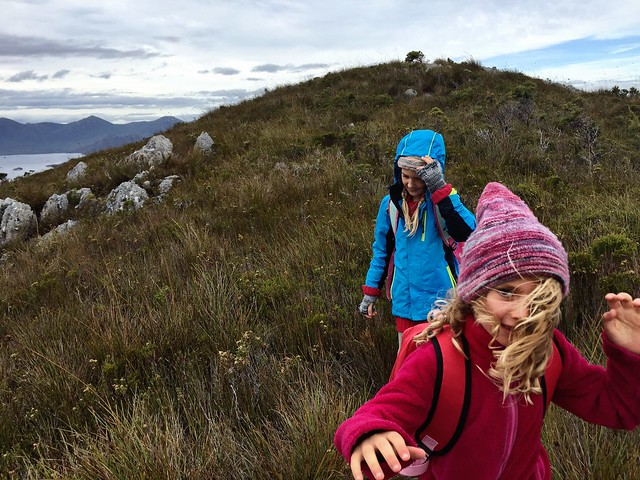 Running down the mountain. Mt Beattie.