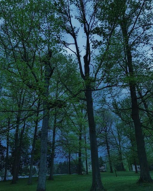 Blue Rain Sky #rainyday #spring