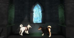 Critter Adventures in the Fairelands - Roleplaying Woofs at Morbus