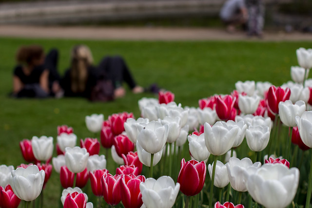 Women Relaxing - Copenhagen, Denmark