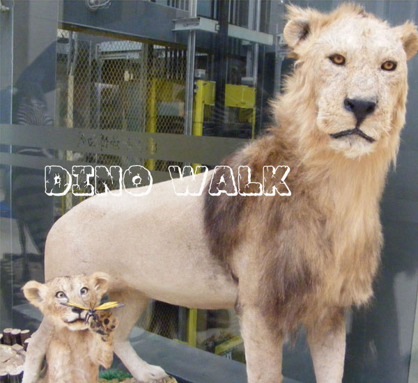 Animatronic Lion as Animal Museum Attractions