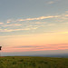 Watching the Midsummer Sunset on Ivinghoe Beacon by Roantrum