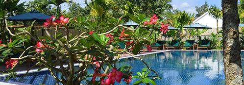 La Magnolia d'Angkor infinity pool
