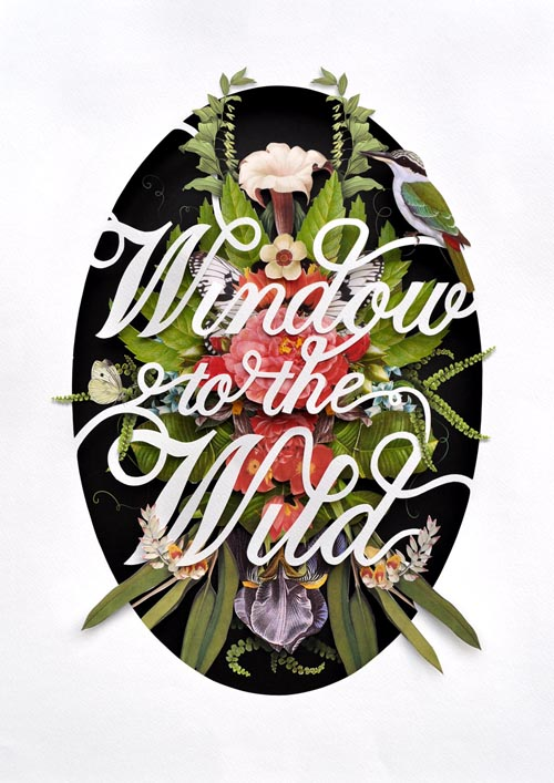 windowtothewild1_poster by Ciara
