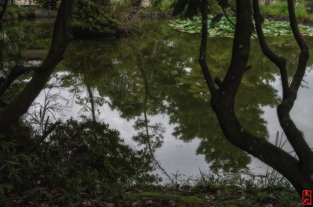 「鏡面」 法起寺 - 奈良