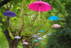 Brollies of colour in Whitworth Park