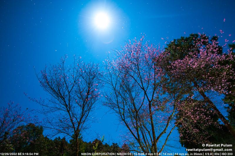 Moonlight Sonata, 3rd Movement
