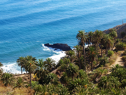 Coastline, Los Realejos, Tenerife