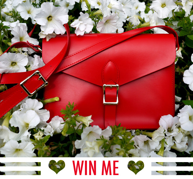 8 PROMO angela + roi vegan messenger bag modavanti giveaway