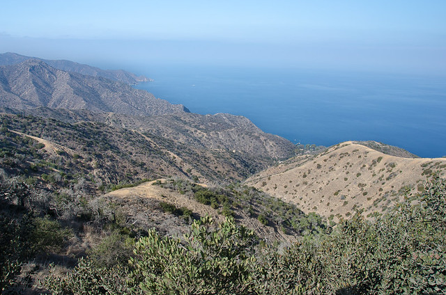 Catalina Island's undeveloped coastline