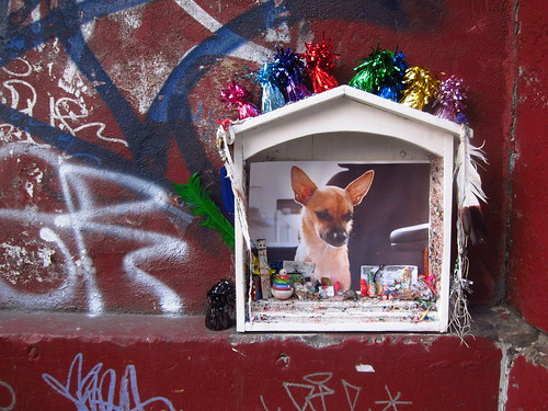 Looking festive, DUMBO dog shrine