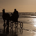Horse & carriage on the beach... by ~ Marjolein ~