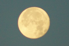 Klaus Naujok posted a photo:	Finally I was able to get some decent photos of a full moon that shows some moon details.