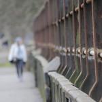 blurred parklife 2014