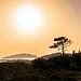 Greek sunset by Bathsheba 1