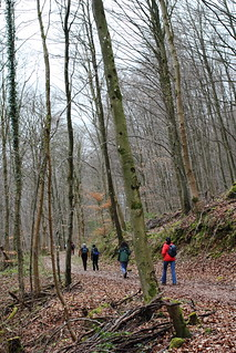 Hiking on German side of Müllerthal