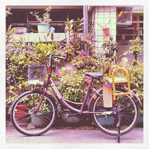 Seating for Two. #caotun  #nantou #taiwan #bicycle
