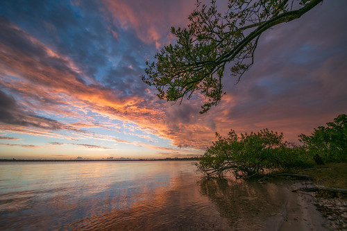 clouds florida landscapephotography manateecounty mangroves trees unitedstates palmetto us