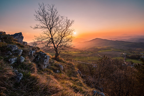 sunrise tree light sun colors spring rocks italia