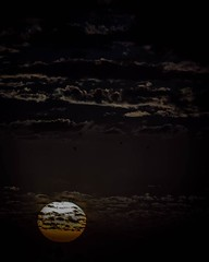 Sunset Sunday, Easter Edition  #sky #sun #sunset #sunsetsunday #ic_skies #birds #nature #naturephotography #clouds #monochrome #colorsoftheweek #blacksunday #blackandwhite #bwphoto #bw #blackandwhitephotography #colorsplash #sunlight #goldenhour #insta_cr