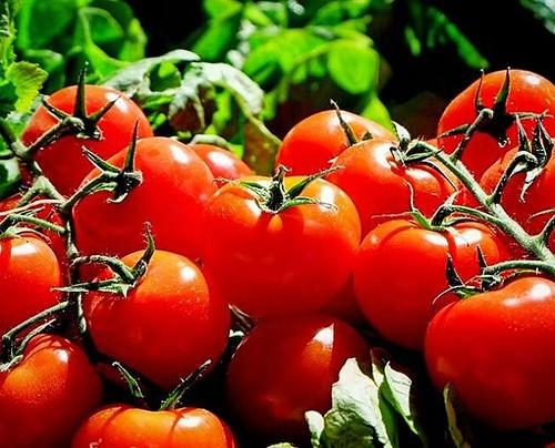 Los beneficios del tomate frente al cáncer #InstitutoTALADRIZ http://buff.ly/2pqTMLE