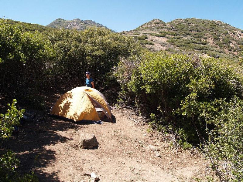 Our campsite and tent at Fobes Saddle