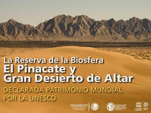 La Reserva de la Biosfera El Pinacate y Gran Desierto de Altar ha sido declarada Patrimonio Mundial