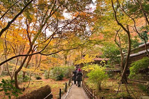 【写真】2012 紅葉 : 祇王寺/2021-09-05/IMGP7856