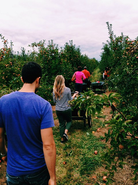 Apple picking with Sarah and Aaron
