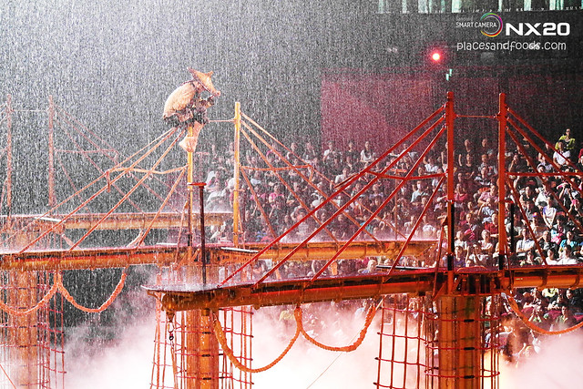 the house of dancing waters raining chinese man