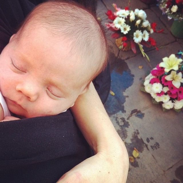Shiloh's first trip to the flower wallah #havemobywilltravel #4weeksold #iphone #india #delhi