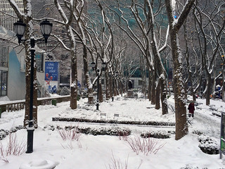 Picture Of Bryant Park In New York City Taken After Snowing. Photo Taken Monday February 18, 2014