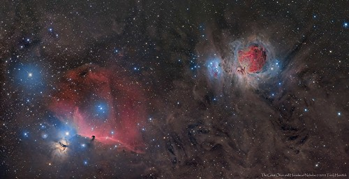 Orion and Horsehead Nebulae
