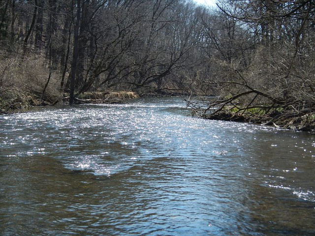 Fly Fishing Monocacy Creek 04-10-2014
