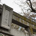 0405_ueno-31